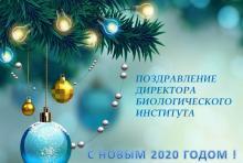Новогоднее поздравление Д.С.Воробьева