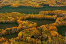 (Не)вечная мерзлота Сибири: как меняется Север из-за изменения климата