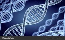 Студенты-биологи получат возможность освоить новые эмбриотехнологии
