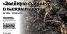&laquoЗелёную фабрику&raquo - в каждый дом, или червяк – твой верный друг  (Журнал &laquoРеальный сектор&raquo, № 5, 2015 год)