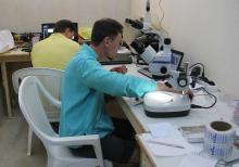 Ученые ТГУ ведут исследования экосистем в месте, выделенном под АЭС