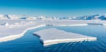 Исследования учёных ТГУ помогут экологическому освоению Арктики
