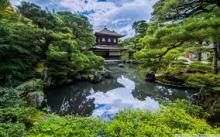 В День томича Ботсад ТГУ создал фотозону в японском стиле