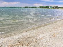 Биологи ТГУ провели обследование памятника природы – озера Песчаного