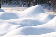 Белый и пушистый: учёные выяснят, сколько в снегу микропластика